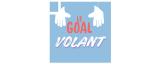 Le Goal Volant
